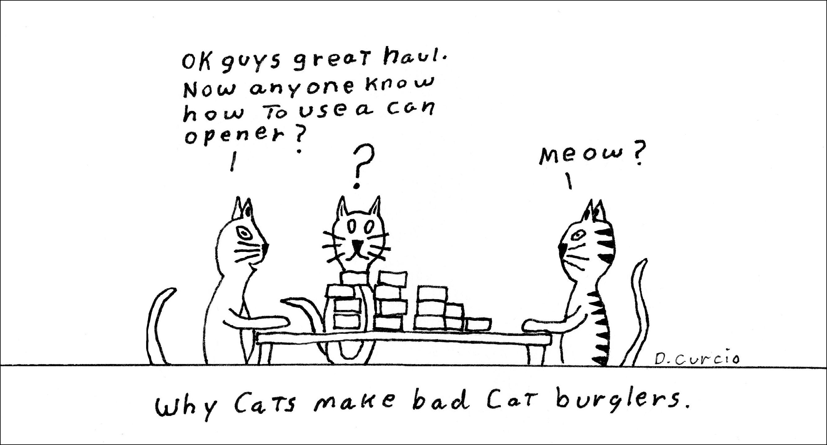 Cat Burglers