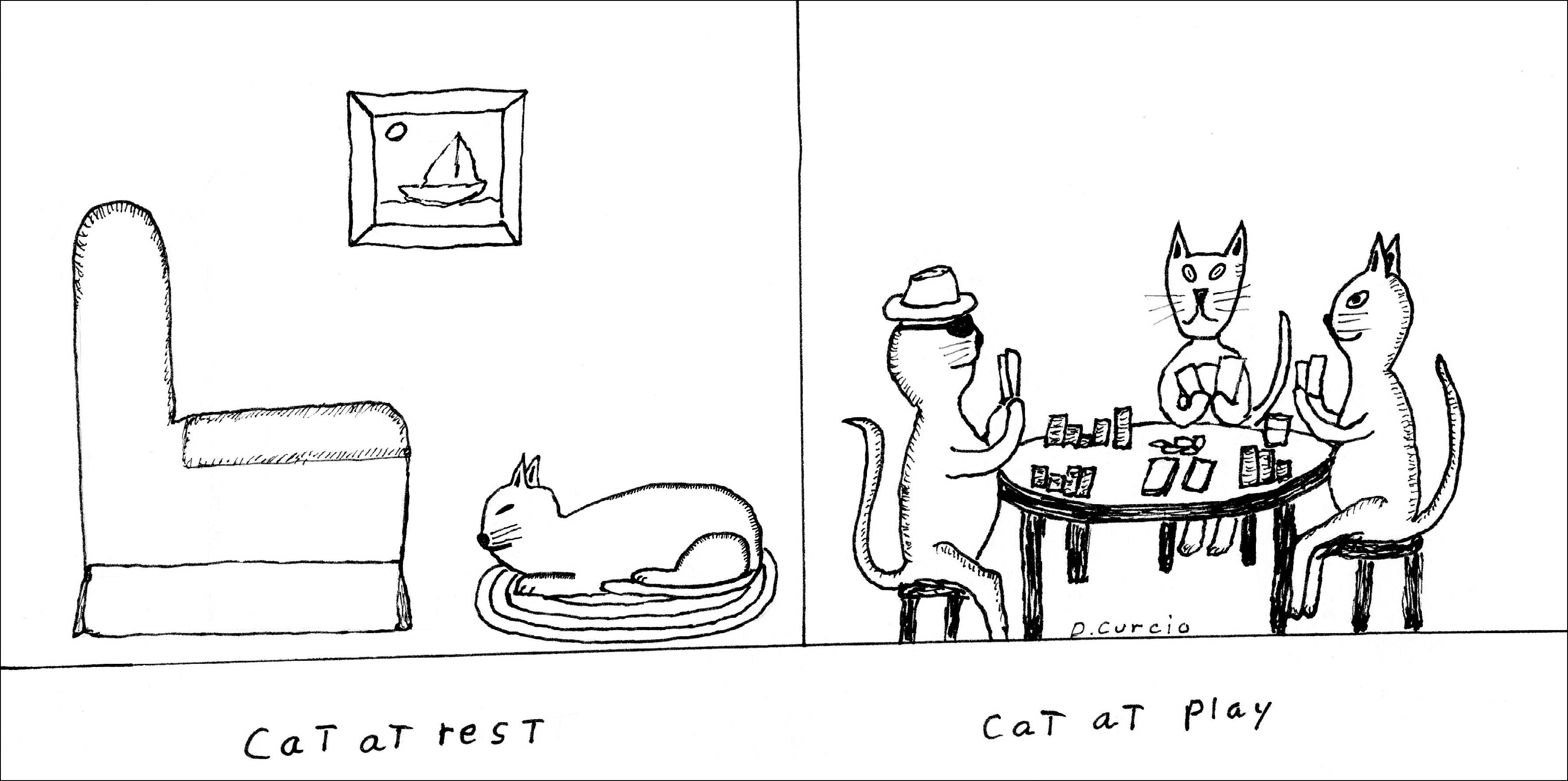 Cat At Play