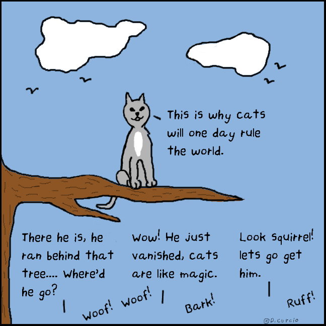 Why  Cats Will Rule