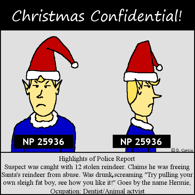 Christmas Confidential